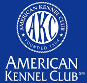 Our Maltese are American Kennel Club registered!